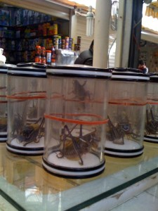 insect market